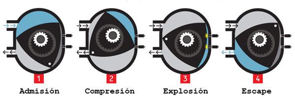Motor rotativo y sus fases