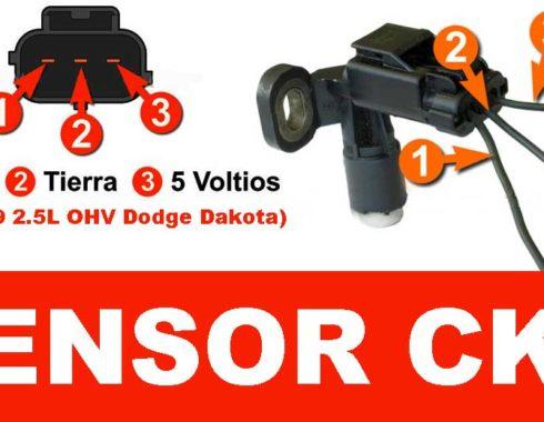 sensor ckp