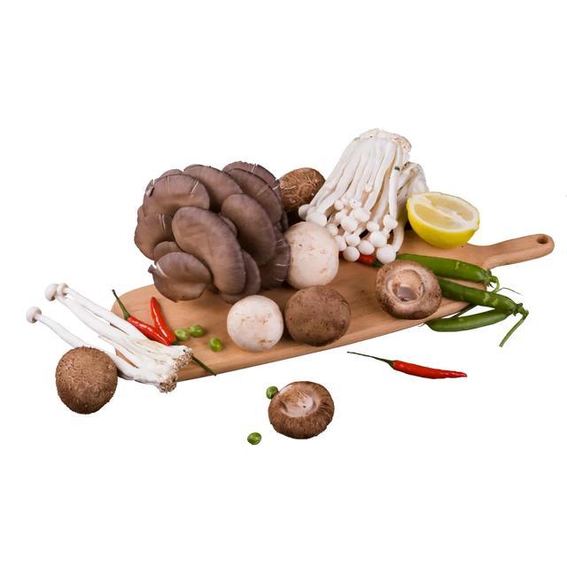 Hongos  -  Alimentos con alto contenido de proteínas