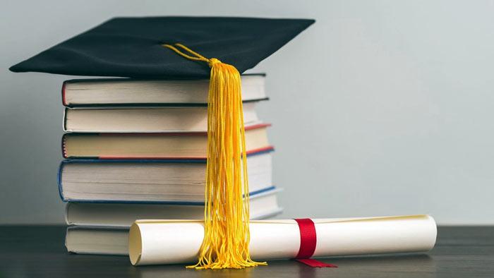 Trabajar en tu país después de estudiar una Licenciatura en el extranjero
